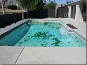 Off Season Pool Service And What You Need To Know